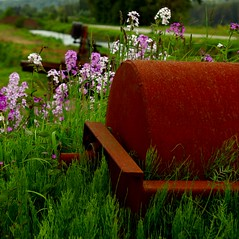 Indolent Implement (Prestidigitizer) Tags: county flower green abandoned spring rust farm rusty equipment bloom crusty golddragon pentaxk10d