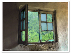 a window to the paradise