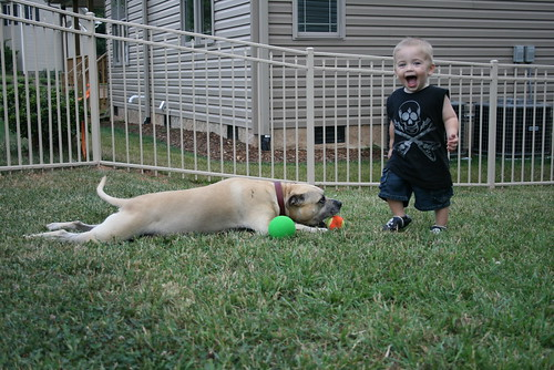 Playing Ball With Bash