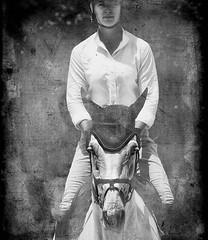 Dorset Hunter Jumper:  2008 (Isabelle Ann) Tags: horse art digital caballo cheval jumping photographer digitalart dorset isabelle cavallo cavalo pferd equine equus paard horseshows hunterjumper manchestervt dorsetvt equineart vermontsummerfestival isabelleann isabelleanngreen equestrianart hunterjumpers dorsetsummerfestival equinephotographer hunterjumpershows artistichorse isabellegreen equitationart hunterjumperart dorsethorseshow hunterjumperphotography hunterjumprphotographer isabellegreenphotography isabelleannphotography isabelleannhorses mostbeautifulhorses equineartist hunterjumperphotographer hunterjumperphotograhy