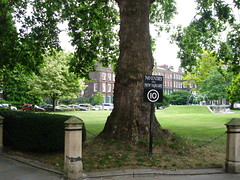 The square within Lincoln's Inn (goreckidawn) Tags: city uk family wedding england colour london english strange landscape inn glory diversity marriage chapel odd holborn metropolis ruth tradition contradiction georges oates lincolns