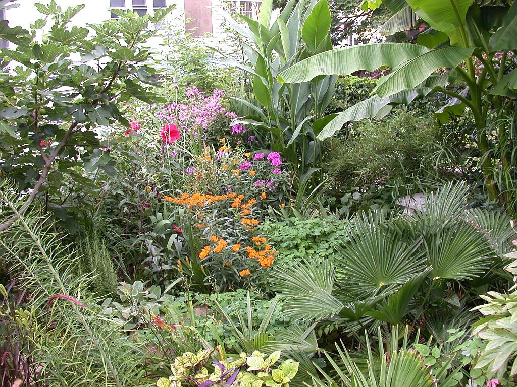 Garden in august in a garden - Another View Of The Garden