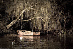 Old Boat ( SandroG) Tags: boat garcia sandro bote pescadores safariba fishingmen anawesomeshot sandrog theunforgettablepictures theperfectphotographer safaribacarmelo safaribauruguay
