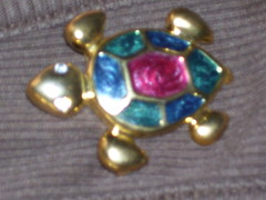 Upclose of the turtle pin