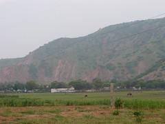 P1000275 (notagoodphotographer) Tags: india village ravi 2008 naresh haryana jaswant bhim akoda mahendergarh kharkara kavaaryatra bhimsing babasad arravalihills arravlihills