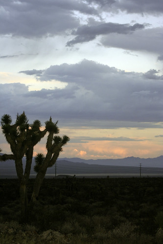 Ivanpah sunset 2