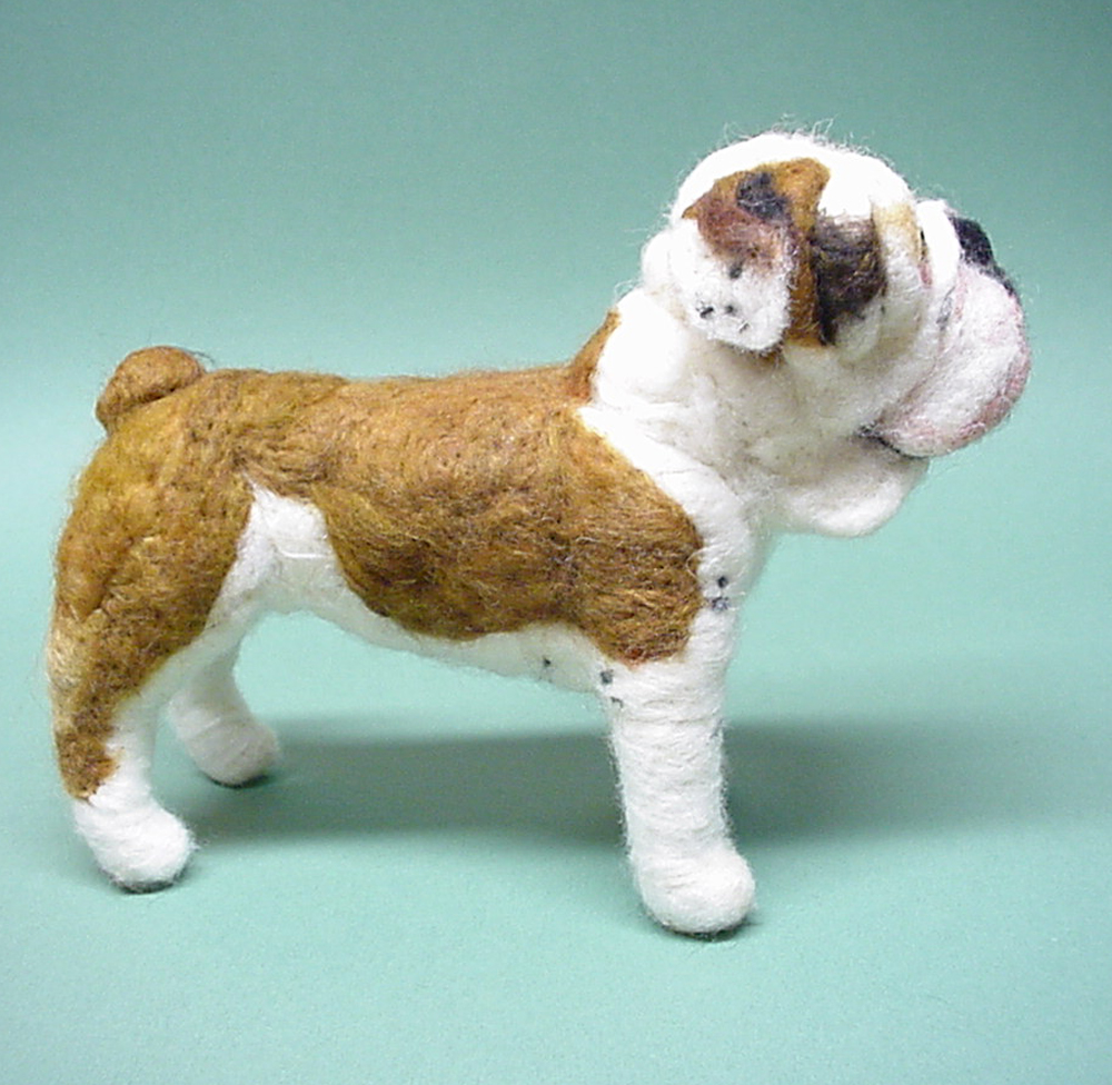 Olde English Bulldogge Shelter Size Difference Of Hermes Olde English Bulldogges