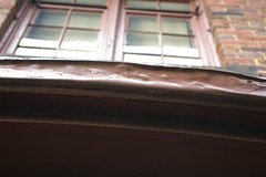 Living room gutter (detail)