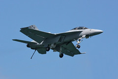Flying Eagles F-18 ((Andrew)) Tags: canada america michigan detroit windsor f18 usnavy flyingeagles redbullairrace