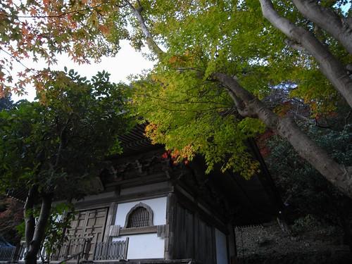室生寺(2008紅葉)-06