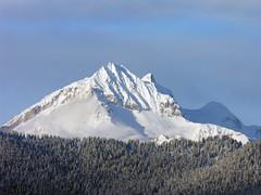 Garibaldi Massive from Alpen