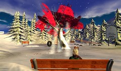 A peaceful spot (Avatrian) Tags: winter snow toronto canada playground virtual mapletree presence ngo kinsa nonprofit metaverse insl avatrian insecondlife kidsinternetsafetyalliance