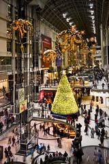 Shoppers (Benson Kua) Tags: city winter toronto ontario canada mall shopping holidays downtown crystal christmastree ornaments swarovski shoppers eatonscentre img6586