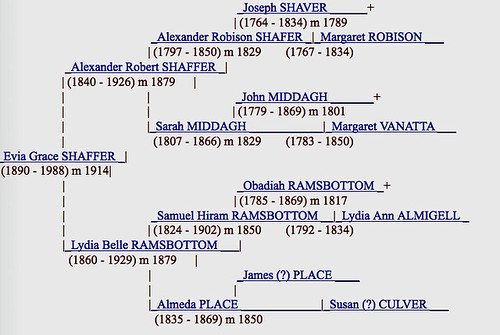 Evia Shaffer's genealogy