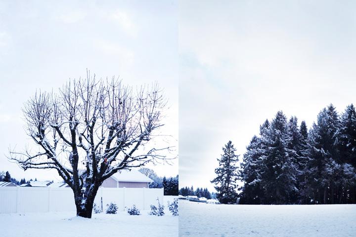snowblog3