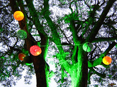 Bolas de Natal sem Flash (Renan Spolon) Tags: christmas light tree verde green natal ball do rj flash bolas luzes arvore barra adrenaline fparker pirai spolon