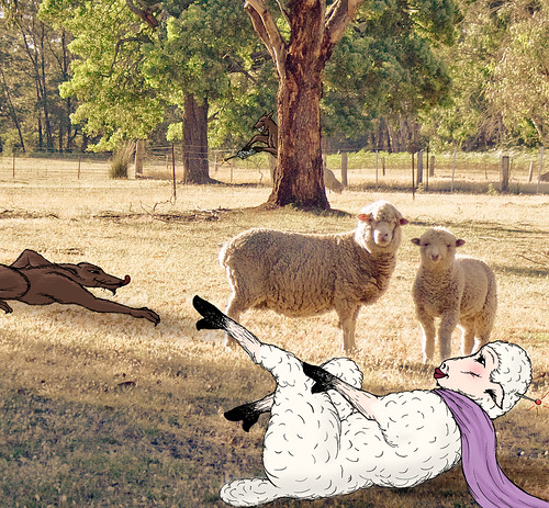 sheepscene.jpg