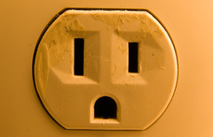 Plug Face - Day 3/365
