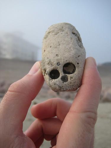 Baby Skull Head