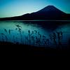 Morning Blues (TheJbot) Tags: blue lake reed grass japan sunrise reeds square dawn fuji 日本 jbot lightroom motosu welltaken motosuko 富士さん elitephotography thejbot mountainsnaps