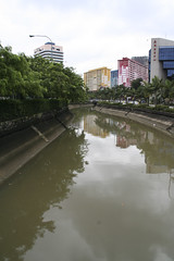 The Lonely S (BorisJ Photography) Tags: city reflection water river big singapore asia s 2008 singapur lioncity fisbob borisjusseit thelioncity