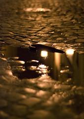 Bastone (Daniele Marcheggiani) Tags: acqua frascati pozzanghera d80