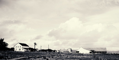 old farm in point reyes . bw