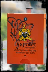 dogtoilet (paride de carlo) Tags: orange dog cane toilet wc bags piazza per bagno lecce chiens sacchetti sacs mazzini hundetuten wwwdogtoiletit