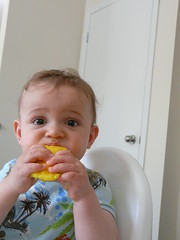 2008-05-17 mango (11)