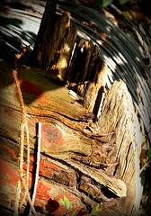 Reel (philwirks) Tags: abstract picnik myfavs luminosity philrichards show08 unlimitedphotos philwirks sonyalphadslra200