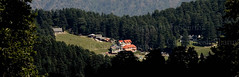 Khajjiar, India   -  Mini Switzerland (Captain Suresh Sharma) Tags: travel india holiday mountains landscape hp asia famous hills popular pinetrees himachalpradesh panoramicview hillresort touristdestination indiantourism densetrees holidaydestination famoustouristdestination populardestination captsureshsharma densegrowthoftrees tourisminindia khajihaar