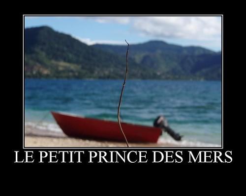 Le petit prince des mers