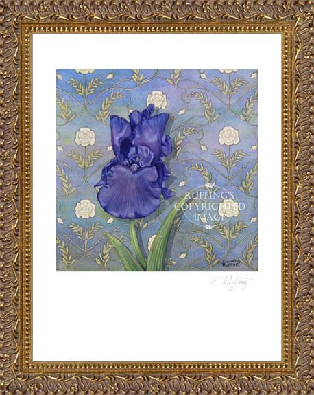 Quiet Night Purple Iris by Elizabeth Ruffing Print Framed