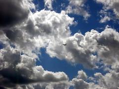 Piercing the clouds (Banana Muffin (Antonio)) Tags: blue sky sun clouds fly searchthebest sweden aircraft greatshot iq breathtaking shiningstar vasteras imagequality bej brillianteyejewel photographersgonewild albardelmondohappyhouremostrefotografiche