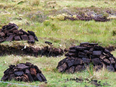 Stacks of Peat (John of Bothwell) Tags: peat peatstacks