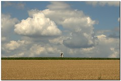 Middle In The Nature (- Burning Rubber -) Tags: sky field clouds geotagged feld himmel wolken miscellaneous frderturm zeche coalmine burningrubber herten blueribbonwinner shafttower supershot mywinners abigfave canoneos400d anawesomeshot impressedbeauty ysplix betterthangood theperfectphotographer goldstaraward bergwerkschlgelundeisen geo:lat=5159898056118104 geo:lon=712234926044512