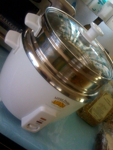 New stainless steel rice cooker and steamer
