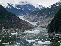 South Sawyer (Seldom Scene Photography) Tags: blue brown white green water alaska tan glacier fjord soe calving abigfave olympuse510 worldw