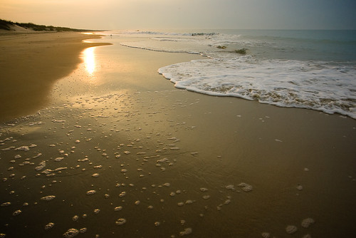 frisco shore