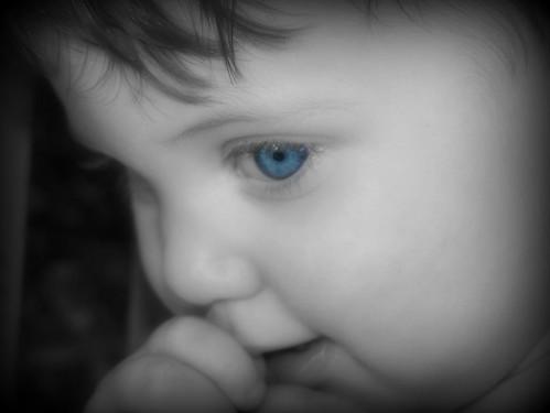Sydney blue eyes