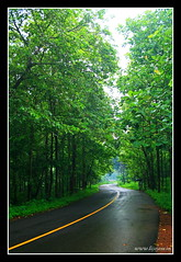 Road to Athirappilly (L i j o J o s e) Tags: trip travel rain kerala explore mazha athirappilly puzha athirappillyhoe