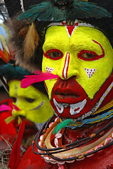 Wigmen from Tari province (Bertrand Linet) Tags: portrait shells face coral festival facepainting feathers feather shell makeup tribal wig papou tribes png tribe papuanewguinea papua ethnic hagen kina maquillage plumes headdress singsing plume huli papu tribu oceania goroka pidgin westernhighlands tribus oceanie 5photosaday ethnique papuaneuguinea papuanuovaguinea パプアニューギニア gorokashow papuan mounthagen mounthagenshow melanesian papuans 巴布亞紐幾內亞巴布亚纽几内亚 papuásianovaguiné papúanuevaguine papuanyaguinea wigmen hulis coloursplosion παπούανέαγουινέα папуановаягвинея papuanewguineapicture papuanewguineapictures papuanewguineanpeople remotetribe papúanuevaguinea makeupgoroka vipveryimportantphotos bertrandlinet papuanewguineamounthagenface