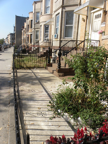 Brooklyn Urban Garden Site Survey