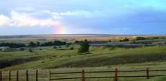 Rainbow, Small