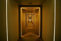 W Seoul - Walkerhill 666 Wホテル ソウル・ウォーカーヒルの光で演出された廊下