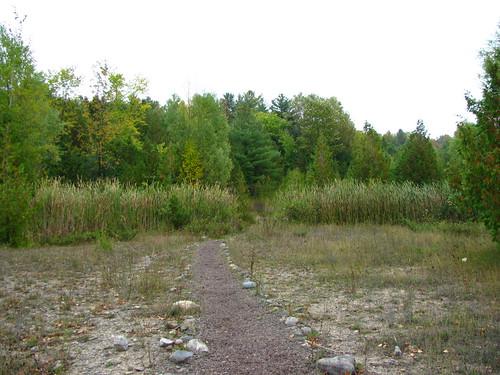 Natural Area Path