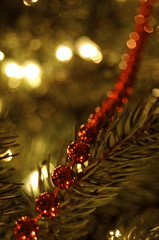 Merry Chirstmas (Brittanyyy.) Tags: christmas red tree beads shiny bokeh