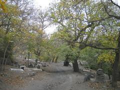 روستا ازغد (Samira.Shalchi) Tags: روستا ازغد