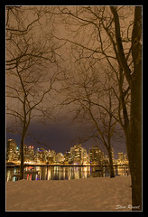 Forest With Distant Light (Steve Rosset) Tags: ocean christmas city travel trees winter sea urban white snow canada cold tourism ice water beautiful skyline night vancouver reflections dark geotagged lights harbor bc waterfront harbour vibrant magic towers dream games eerie powder tagged coastal falsecreek inlet olympics dreamworld geo global dreamscape 2010 steverosset steverossetphotography