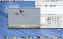 flv on QuickTime Player